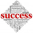 Stockfoto: Success concept in tag cloud