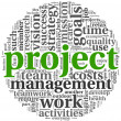Project and management in tag cloud - Photo