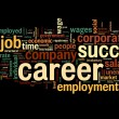 Career concept in word tag cloud — Stockfoto