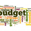 Budget concept in tag cloud — Stock Photo