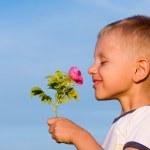 Boy smelling rose flower — Stock Photo
