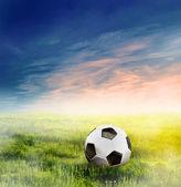 Football, soccer ball on green grass — Stock Photo
