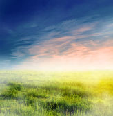 Fairy, magical landscape with sunrise fog — Stock Photo