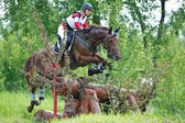 Woman eventer on horse is overcomes the fence — Stock Photo