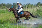 Rider on horse is negotiating cross-country Water jump — Stock Photo