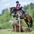 Woman eventer on horse is overcomes the Log fence — Stock Photo