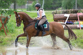 Eventer on horse negotiating Water jump — Stockfoto
