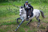 Cross-country. Unidentified rider on horse — Stock Photo
