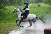 Eventer on horse negotiating Water jump — Stock Photo