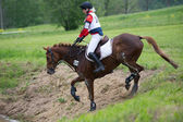 Eventer on horse is overcomes the cross-country fence — Stock Photo