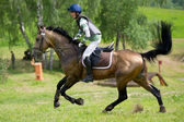 Equestrian sport. Eventer on horse riding gallop — Stock Photo