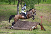 Equestrian sport. Eventer on horse riding gallop — Stockfoto