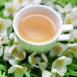 Jasmin tea - Stock Photo