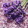 Lavender bath salt — Stock Photo #11245671