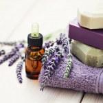 Lavender beauty — Stock Photo #11757321