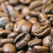 Close-up of coffee beans — Stock Photo