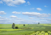 Rural landscape with green hill and blue sky in Poland — Stock Photo
