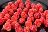 Taze organik meyve - siyah arka plan seçici odak olgun Kırmızı Ahududu — Stok fotoğraf