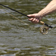 Fly fishing rod and reel — Stock Photo