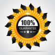 Yellow label. 100% Guarantee — Stock Vector