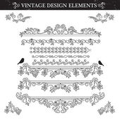Vintage ornament set on white background. — Stock Vector