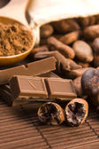 Cocoa (cacao) beans with chocolate — Stock Photo