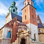 Постер, плакат: Wawel Cathedral