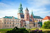 Wawel In Krakow — Stock Photo