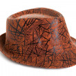 Brown hat - Stock Photo
