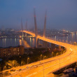 Opening of the suspension bridge in Vladivostok — Stock Photo