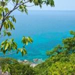 Beautiful ocean coast — Stock Photo #11029582