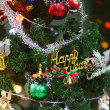 Christmas Tree — Stock Photo #11764934
