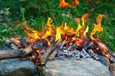 Fire on stones — ストック写真