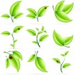 Fresh Green Leaves Icon Set — Stock Vector #11152936