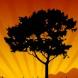 Amazing natural sunset landscape with tree silhouette, vector il - Stock Vector