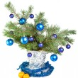 New Year's still-life - fur-tree branches - Stock Photo