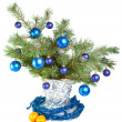Stock Photo: New Year's still-life - fur-tree branches