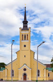 St. John's Church, neogothic style, 1860 on Freedom Square. Tallinn, Estonia. ( Jaani krik) — Stock Photo