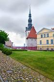 Old city, Tallinn, Estonia. Dome cathedral-the oldest church of Tallinn. — Stock Photo