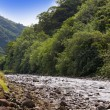 Stock Photo: Tahiti. Mountain river