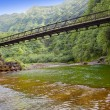 Stock Photo: Tahiti. bridge through river in mountains.