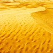 Desert Sahara — Stock Photo #11151967