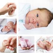 Coleção bebê — Foto Stock