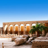 Temple of Karnak Egypt — Stock Photo