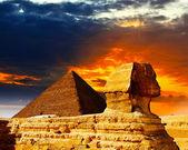 Grand sphinx — Photo