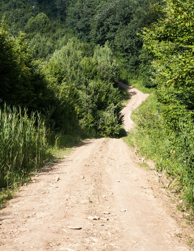 Road in the forest — Stock Photo #12207810
