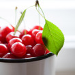 Twig with green leaf and cherries — Stock Photo