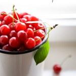 Bunch of cherries — Stock Photo