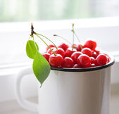 Red cherries in white mug — 图库照片