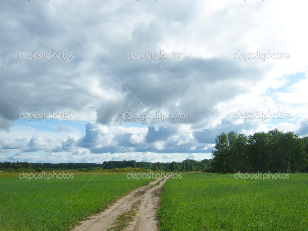 Road in field and cloudscape — Stock Photo #12242539